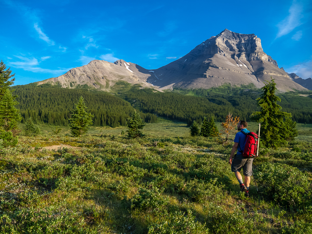 We've already done 500 vertical meters and are crossing the meadows towards Mount Coleman.