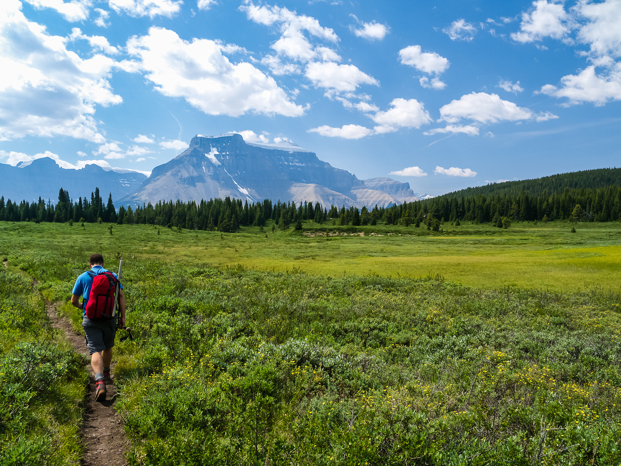 A lovely walk back through Sunset Pass Meadows with Amery tempting us in the distance.