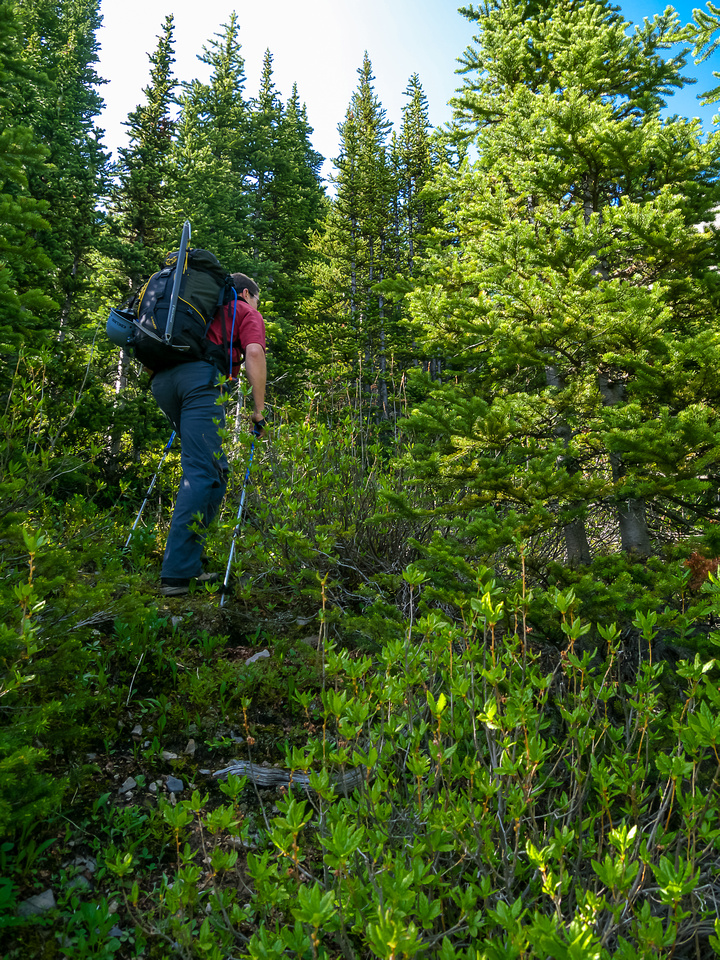 Starting up on climber's left of the outlet stream. The more left you go, the easier the bushwhacking.