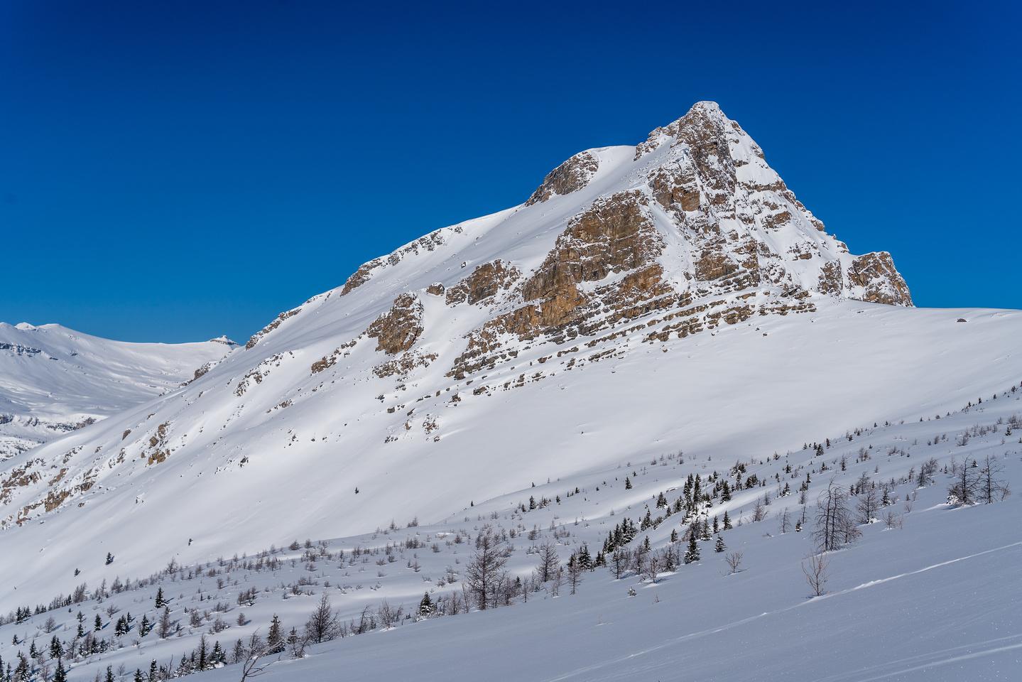 The Helena Peak outlier is striking!