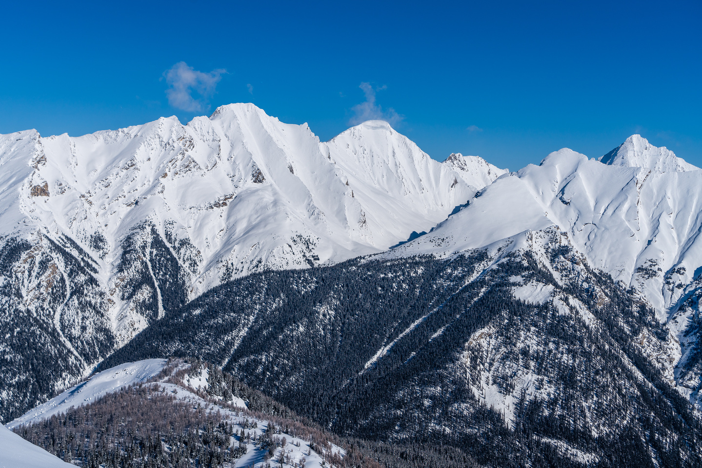 More views over unnamed peaks along the Sawback Range with Block Mountain almost hidden.