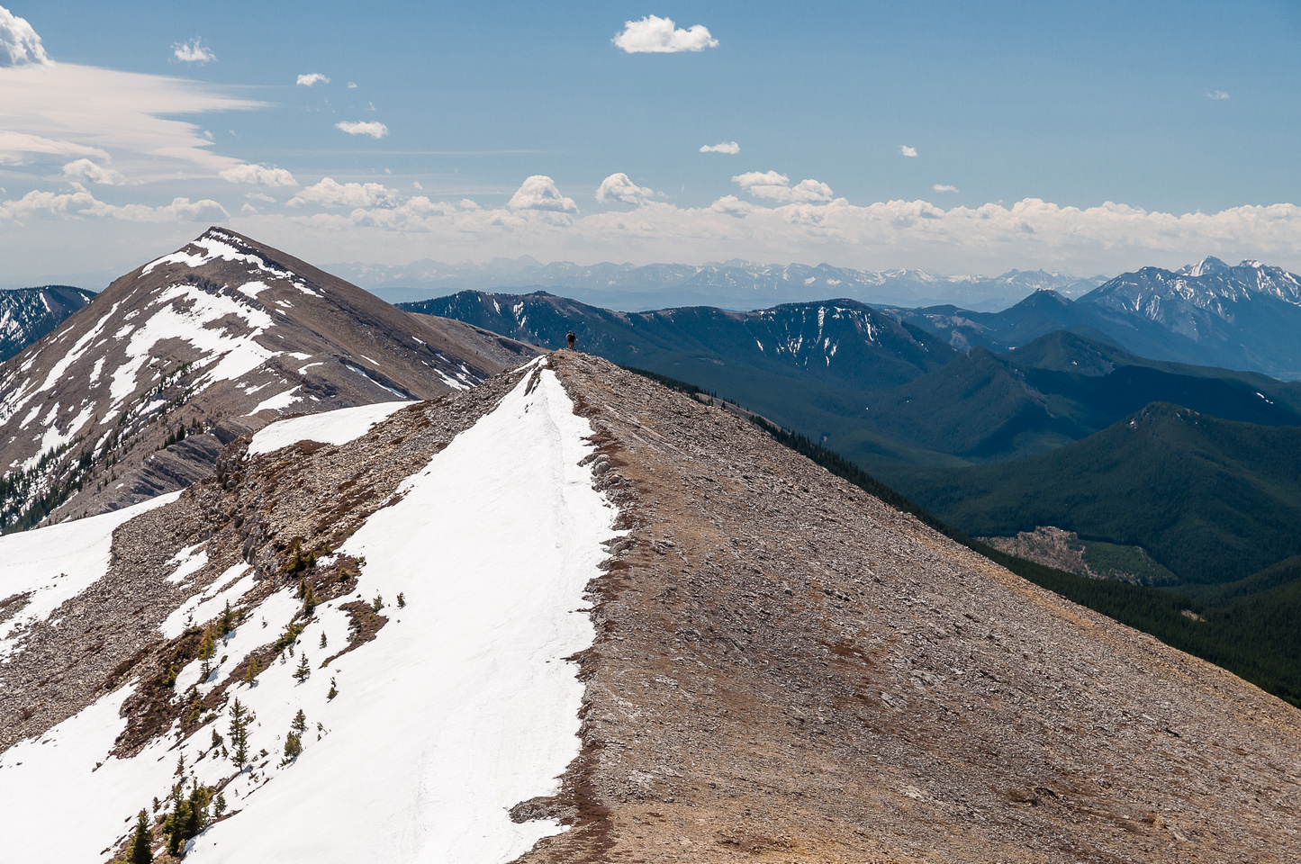 Looking back along the south ridge to Coffin.