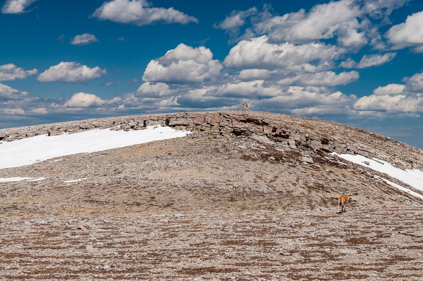 The group traverses over to the lower north summit.