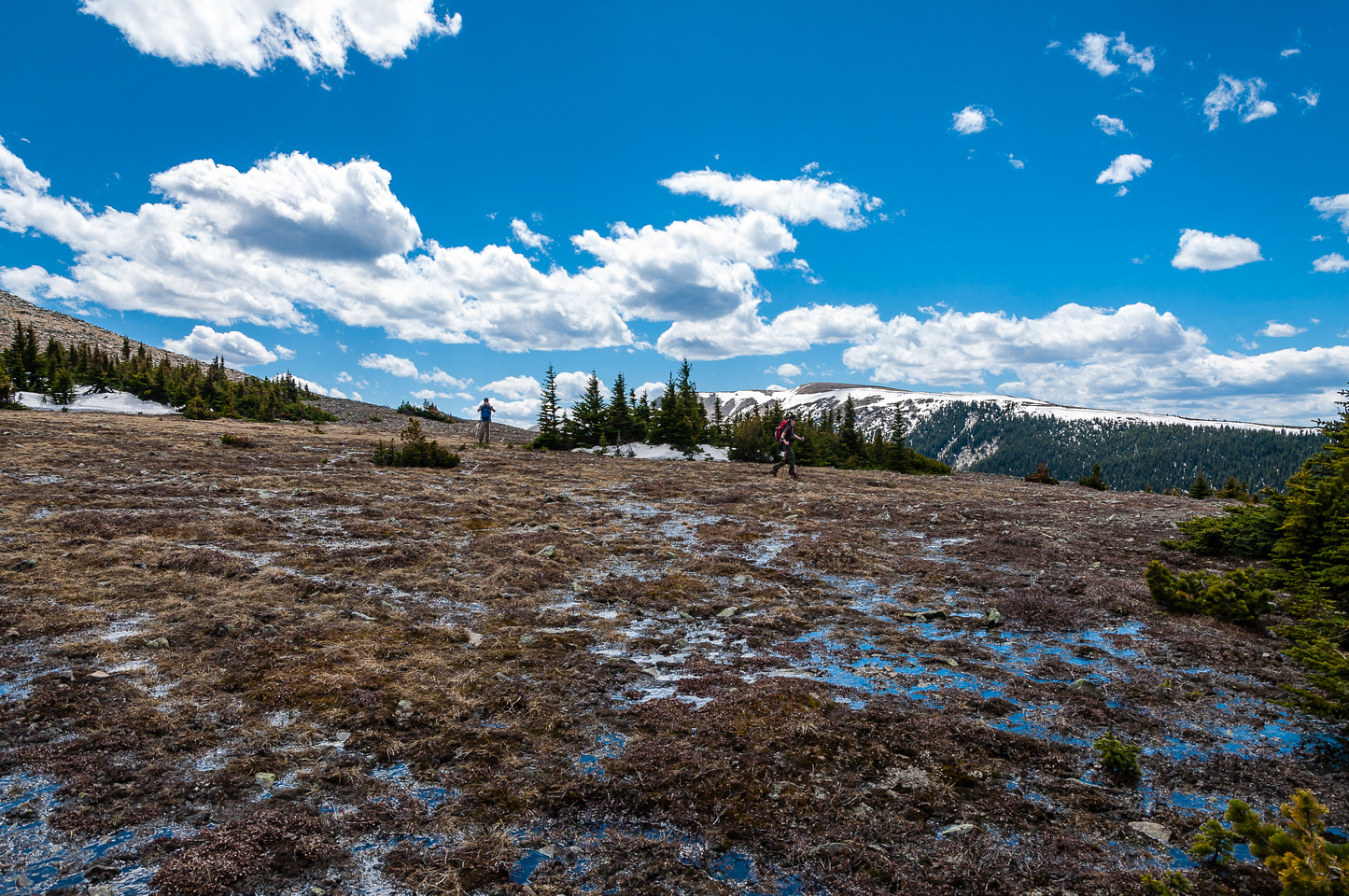 Traversing wet meadows between Saddle and Hornecker.