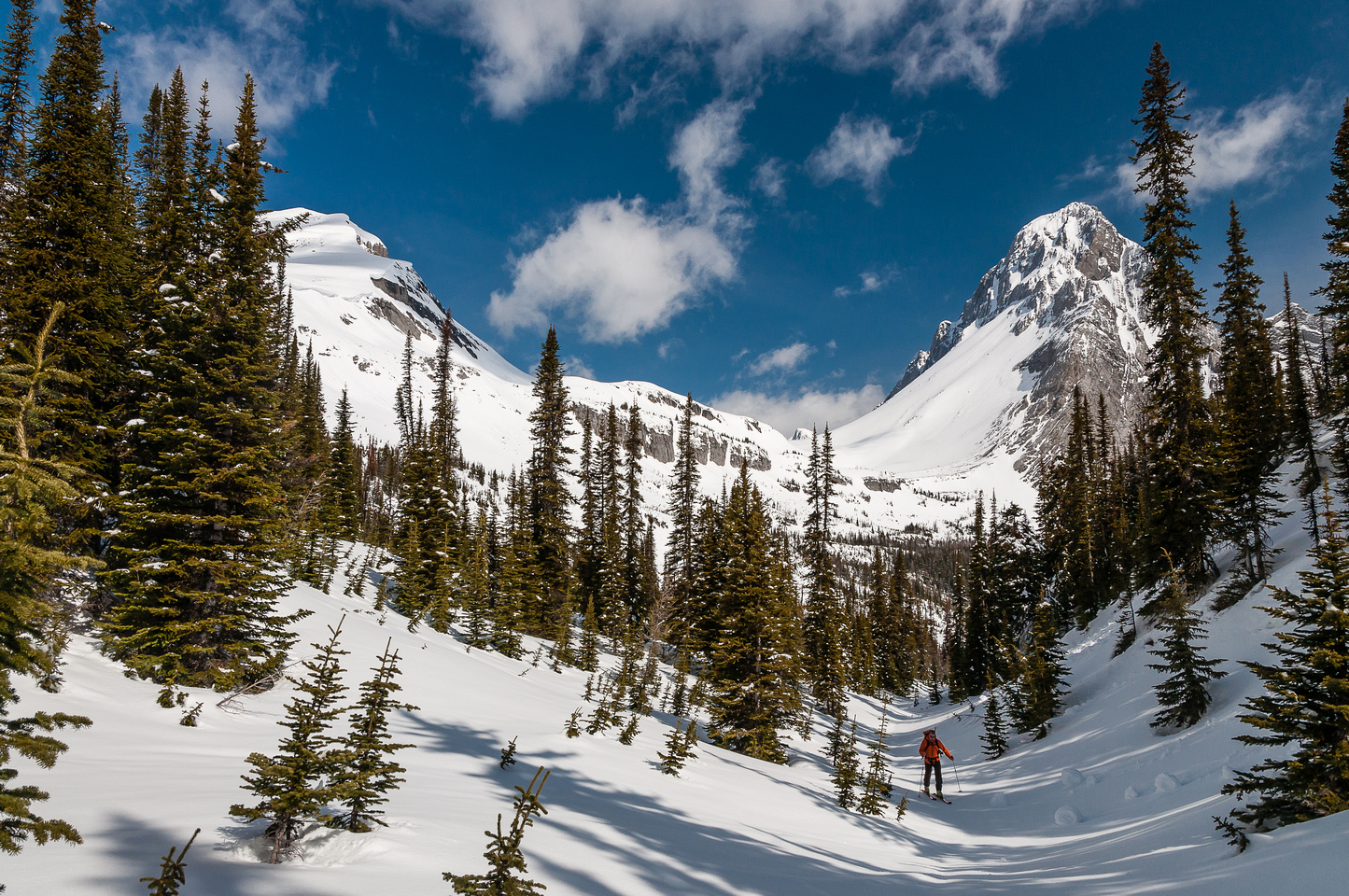 Ascending a draw towards Burstall Pass, looking back at Snow Peak (L) and Mount Birdwood (R).