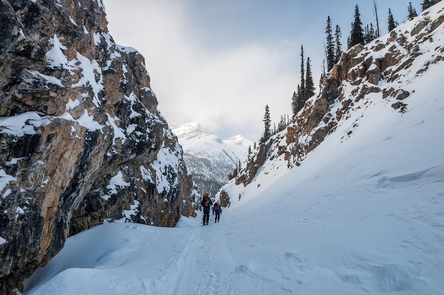 Descending the Bow Canyon towards Bow Lake.
