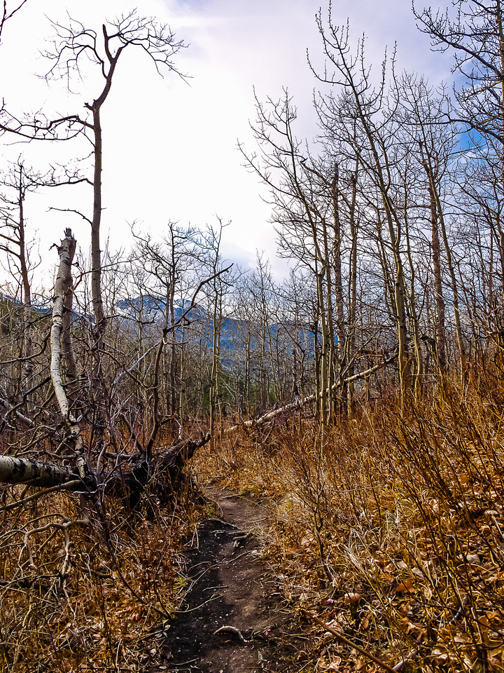 Late fall hiking with absolutely no wind!