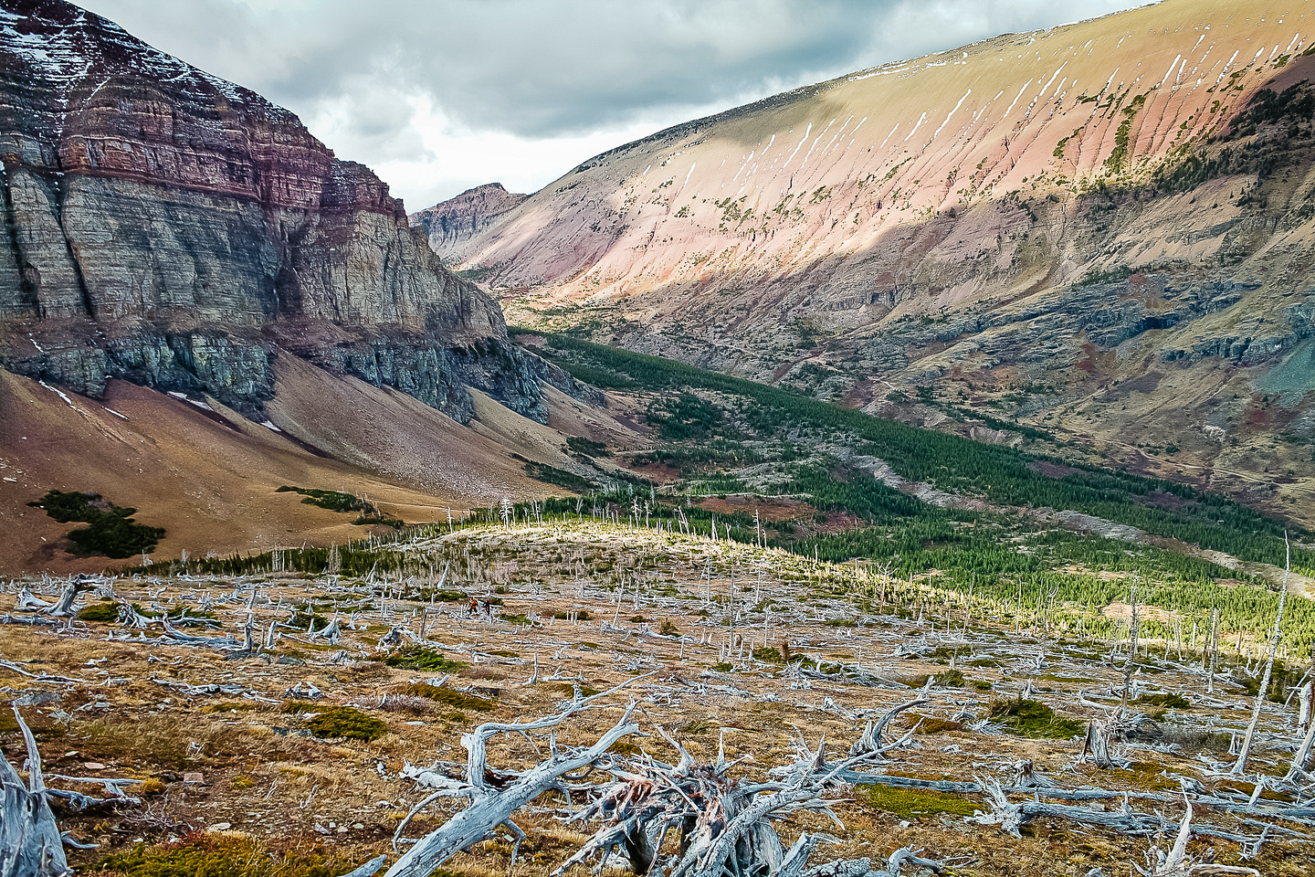 Very interesting terrain with soaring cliffs, dead trees and extremely colorful rock.