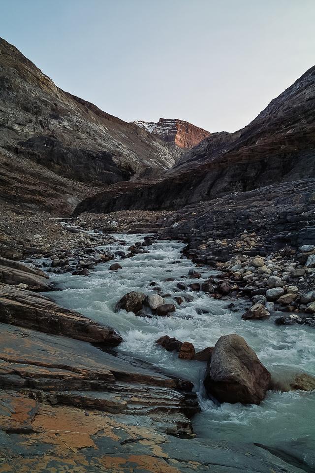 Peyto Creek.