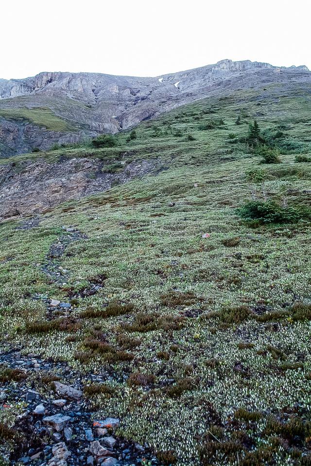 Steep grassy slopes ahead.