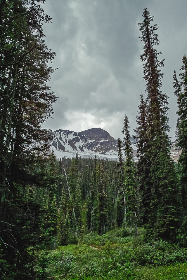 Hiking out of the Yoho Valley with thunderstorms above.