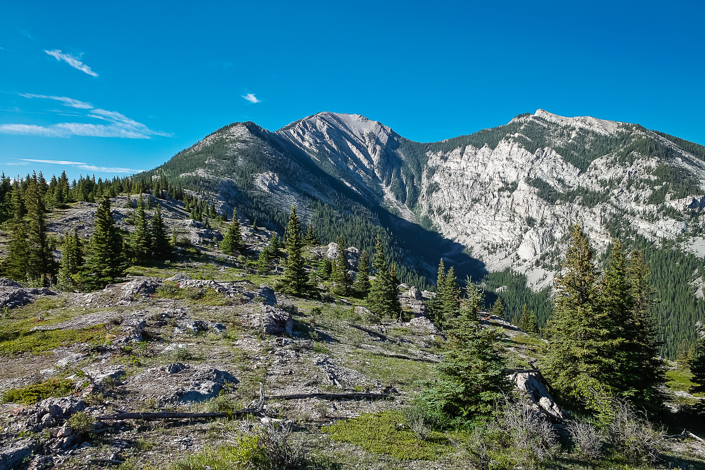 Breaking out of the trees, this is the wonderful view of the ridge ahead.