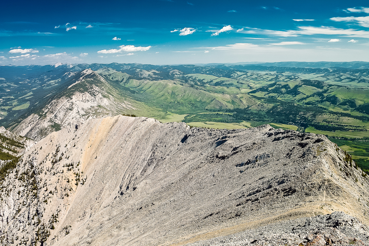 From left to right there is Livingstone Ridge, Camp Creek Ridge, Miles Coulee, Whaleback Ridge, Black Mountain.