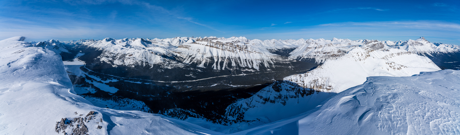 Views over #93 include Bow Lake (L), Dolomite (C) and Bow Peak (R).