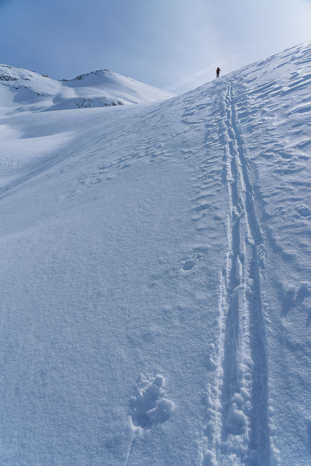 Skinning up the Crowfoot Glacier.