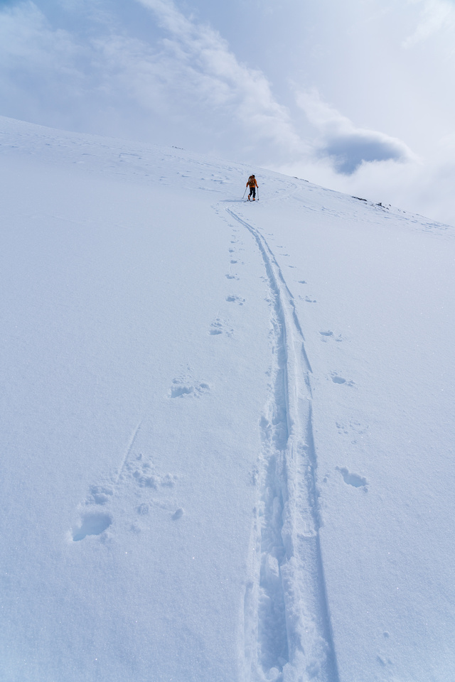 Skiing up the west slopes of Crowfoot.