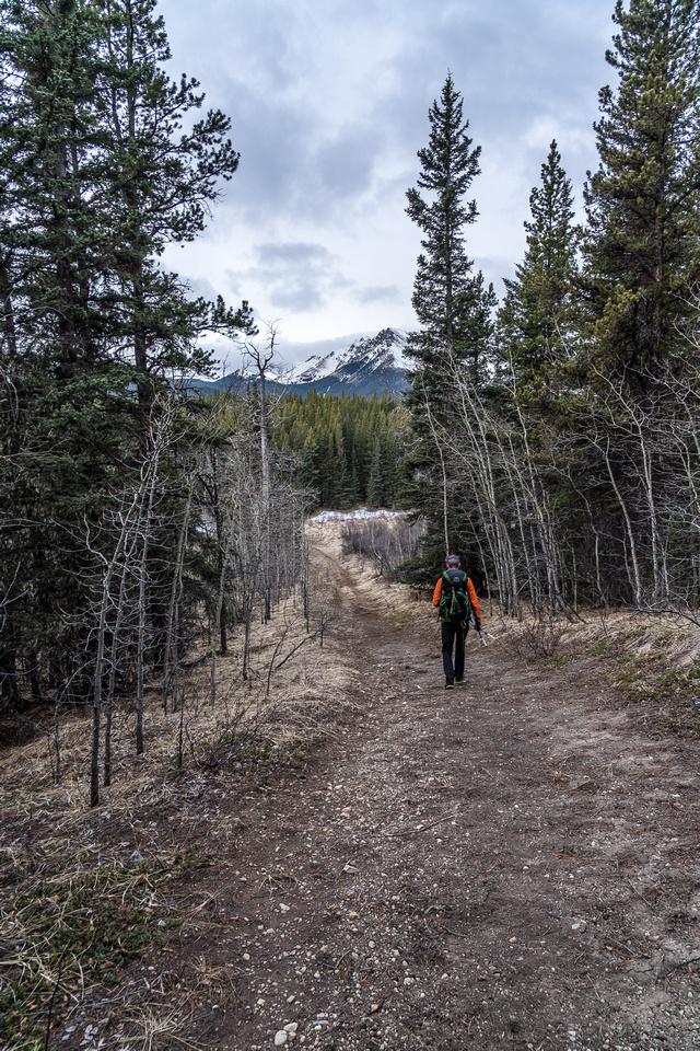 Hiking along the wagon trail.