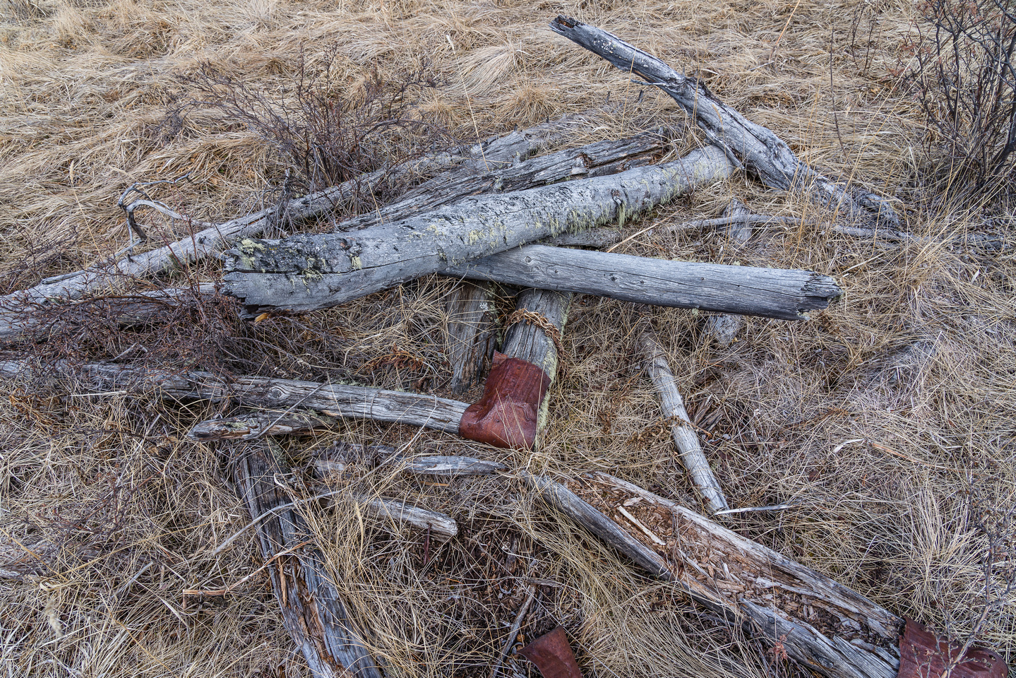 An old hitching post.