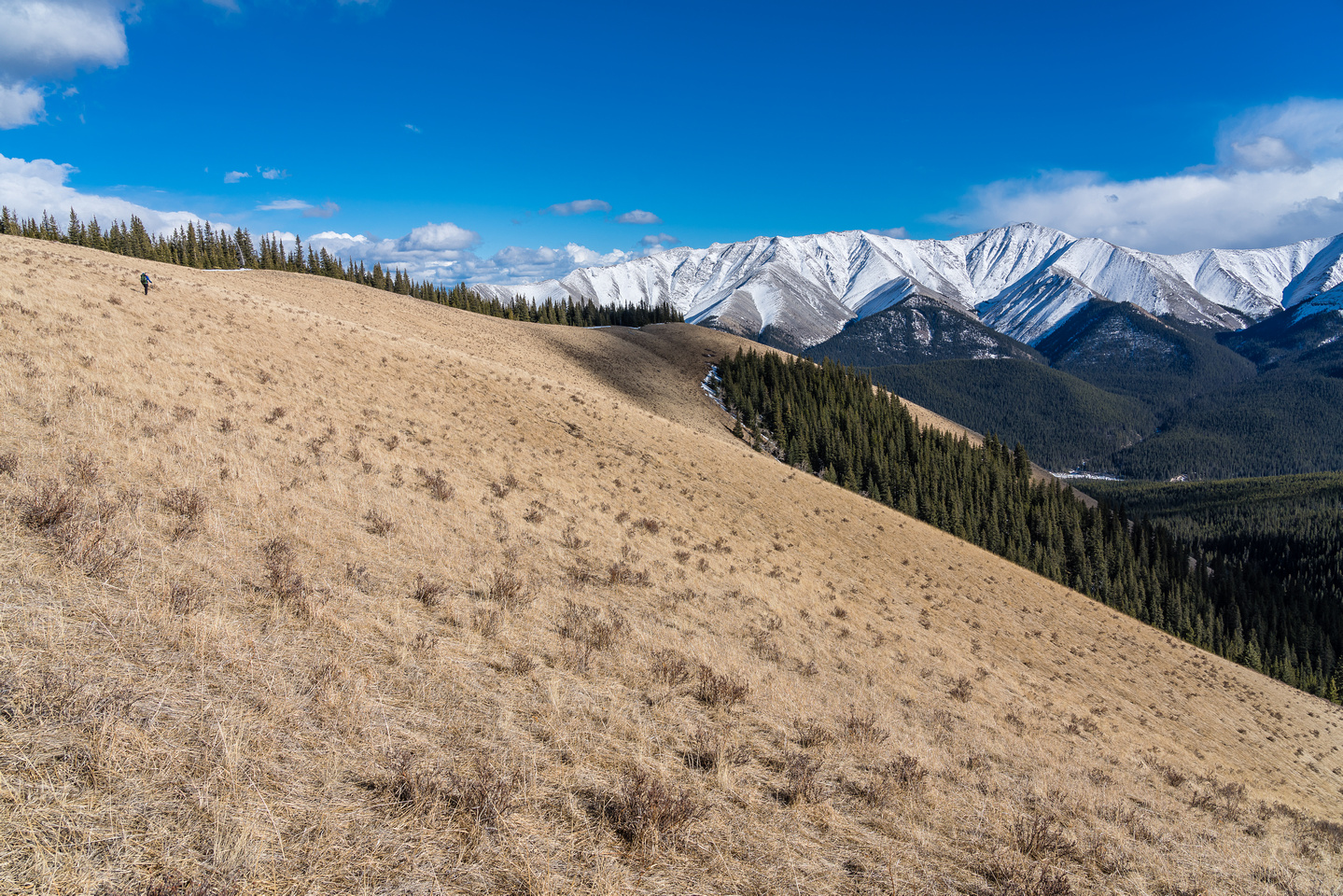 Hiking up the grassy ridge. Winchester Ridge in the distance here.