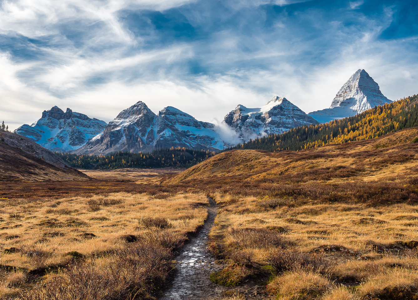 Looking back at The Towers, Naiset Point, Terrapin, Magog and Mount Assiniboine (L to R).