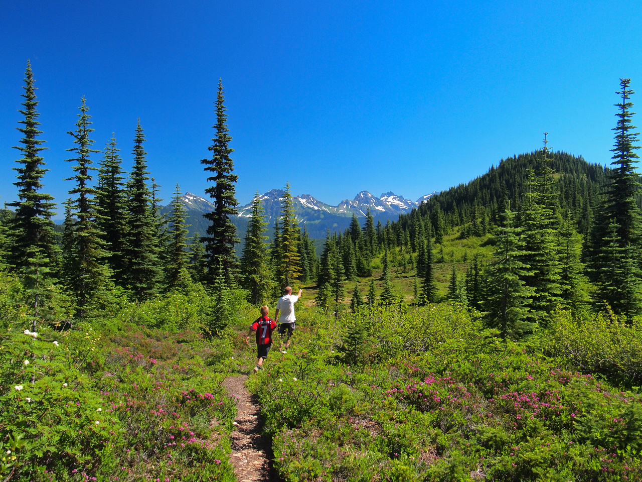 Hiking from the middle bump to Thurston Mountain. There was a few beautiful meadows on this stretch.