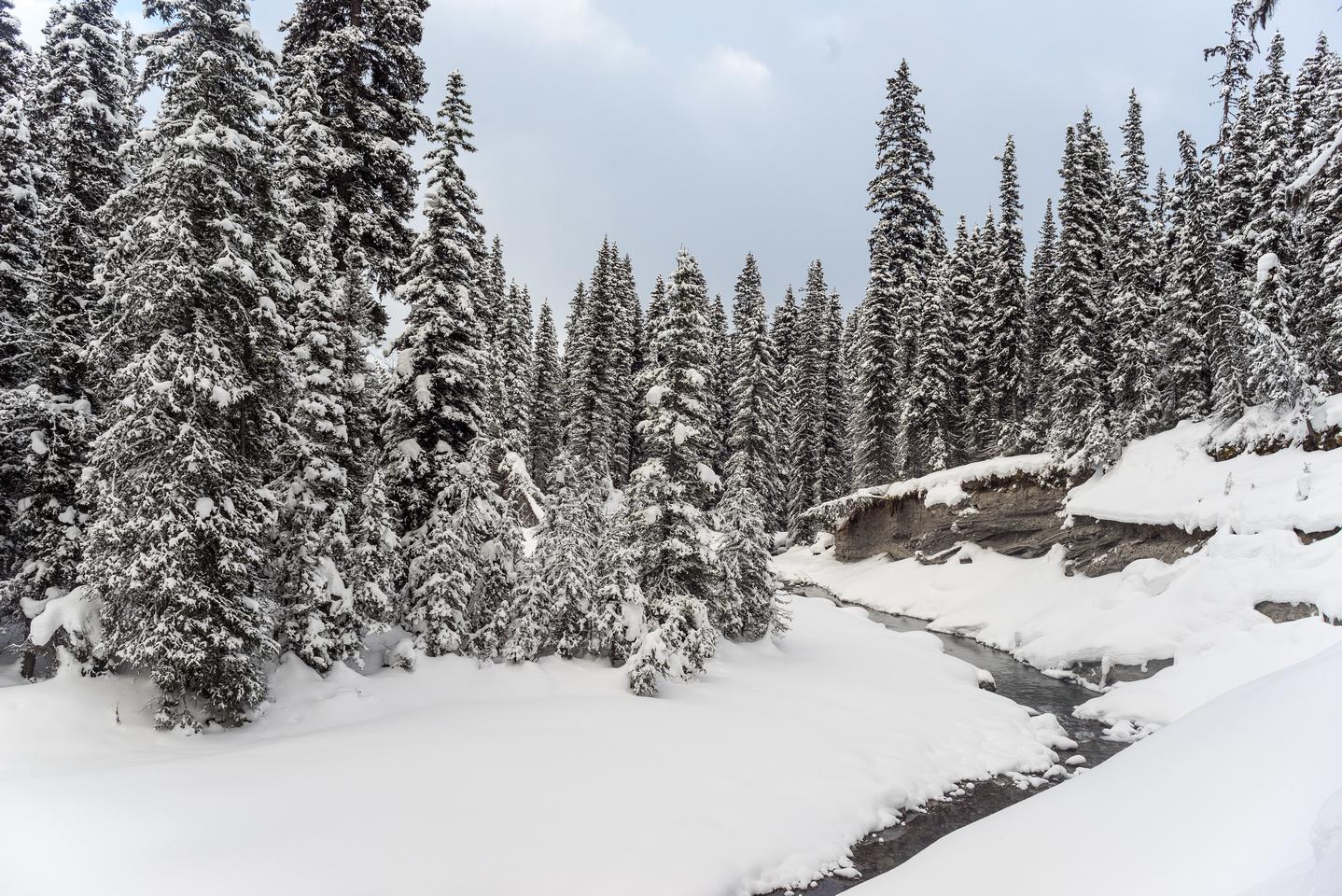 Petain Creek.