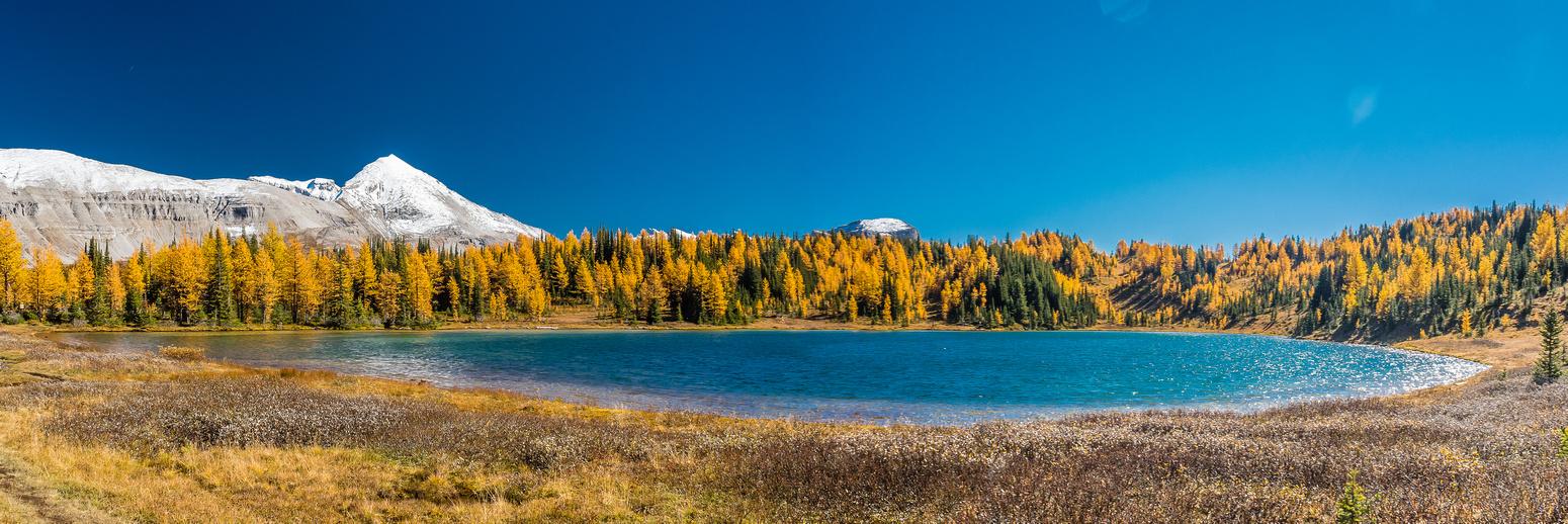 Howard Douglas Lake.