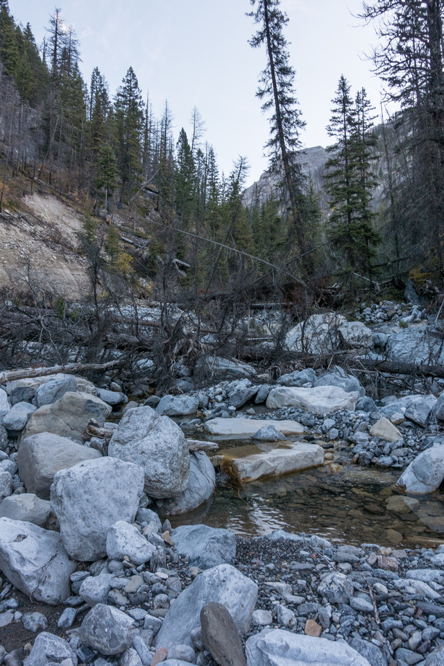 The stream is full of fresh debris, thanks to the 2013 floods. The rock is also very unstable making for a tough approach.