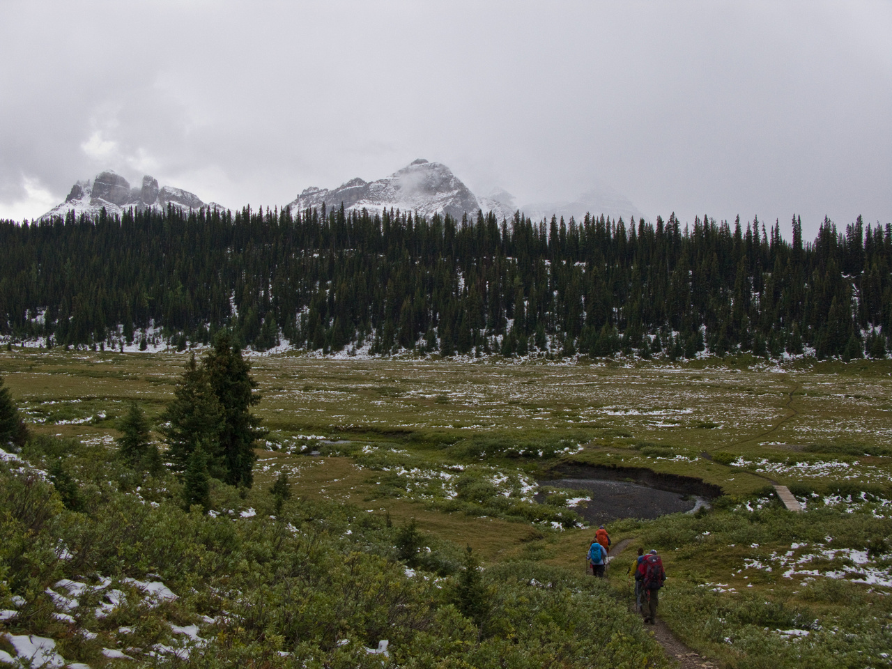 Sunshine Meadows at last. 3km to go.