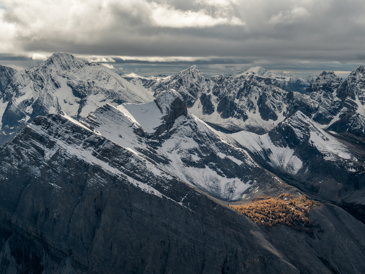 An island of brightly colored larches amongst a sea of grey, foreboding peaks. This is looking over Marvel Peak (C) towards the Blue Range and Mount Currie (L).