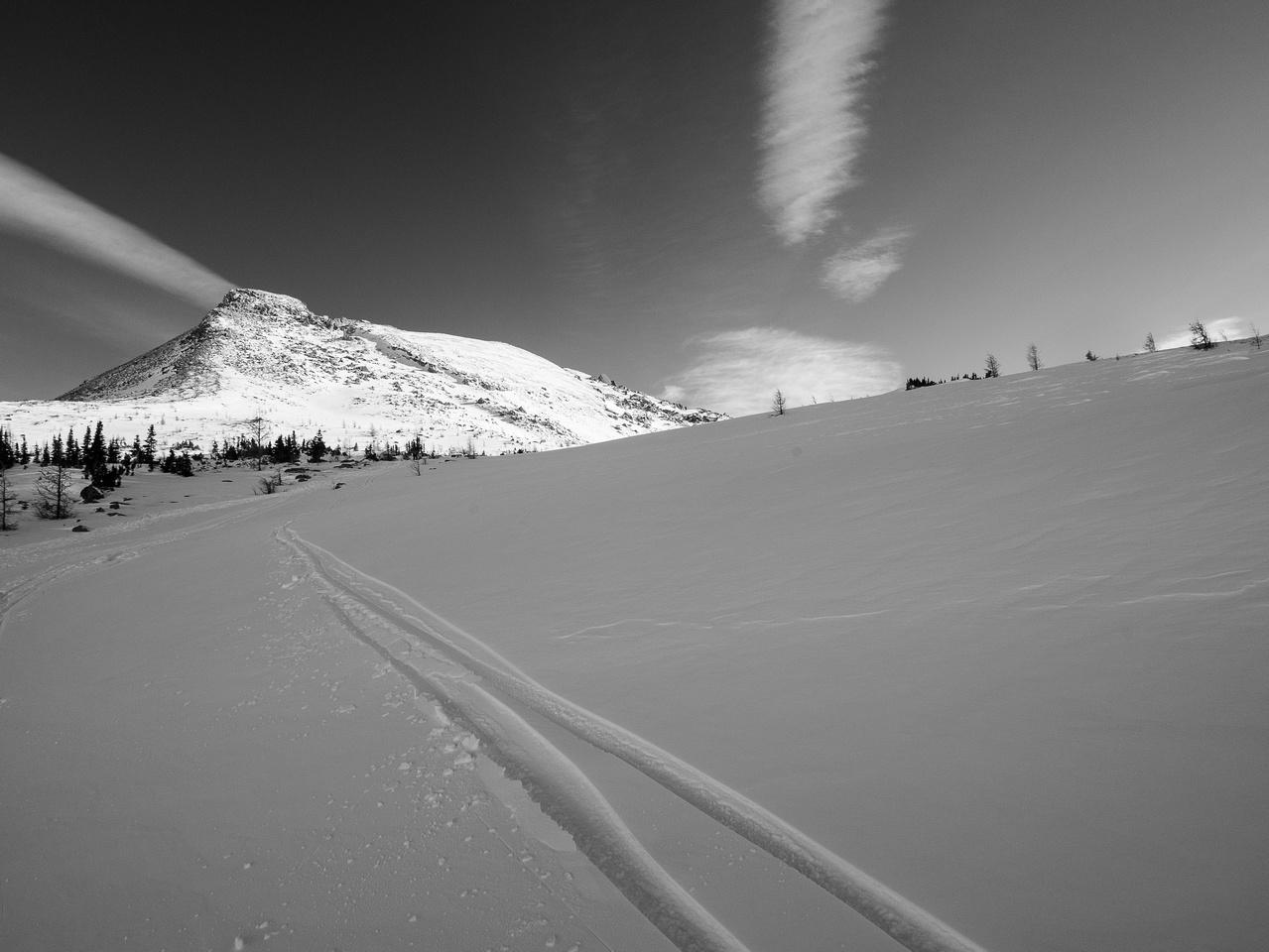 The ski back.